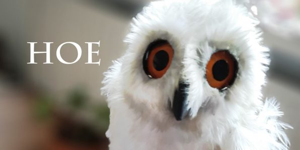 animatronic owl made servo controlled puppet muppet pololu example