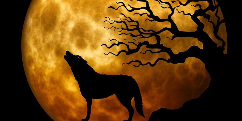 Een bekend verhaal dat zich afspeelt tijdens volle maan is dat van de weerwolf. Dizary schrijfinspiratie